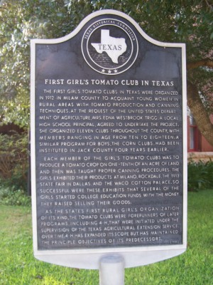 First Girls Tomato Club in Texas Historical Marker, Cameron, Milam, TX